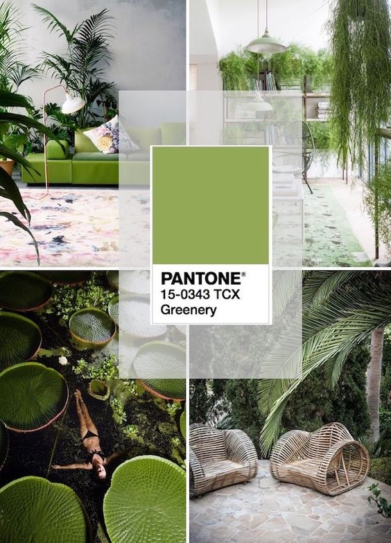 pantoneofyear